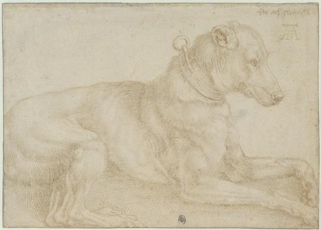 , 'Dog Resting,' c. 1520, British Museum