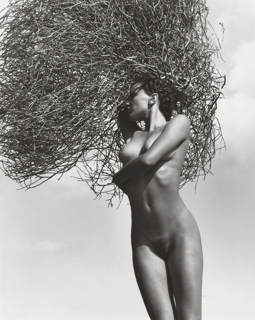 , 'Neith with Tumbleweed, Paradise Cove (C),' 1986, Hamiltons Gallery