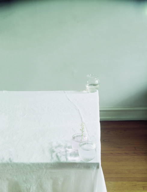 Laura Letinsky, 'Untitled #114, from the series Hardly More Than Ever', 2003, Tracey Morgan Gallery
