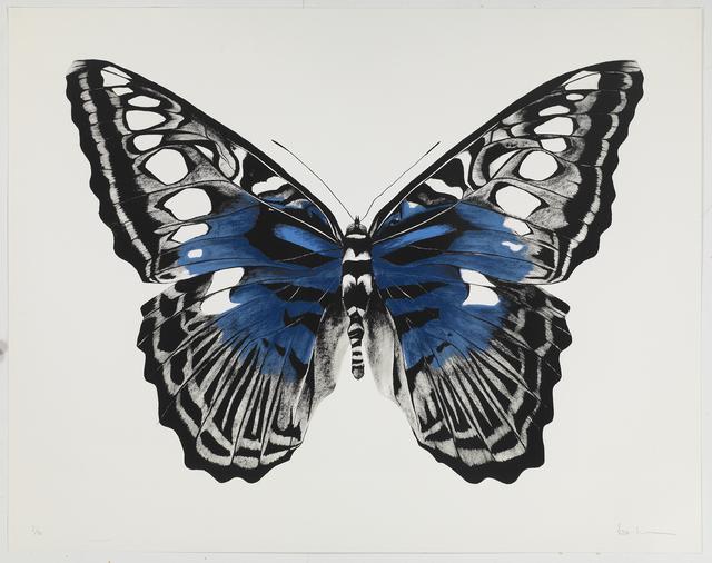 , 'Butterfly Blue Silkscreen,' , Sladmore