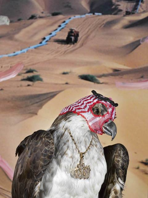 , 'Trapping Season, Saudi Arabia,' 2017, Williamson | Knight