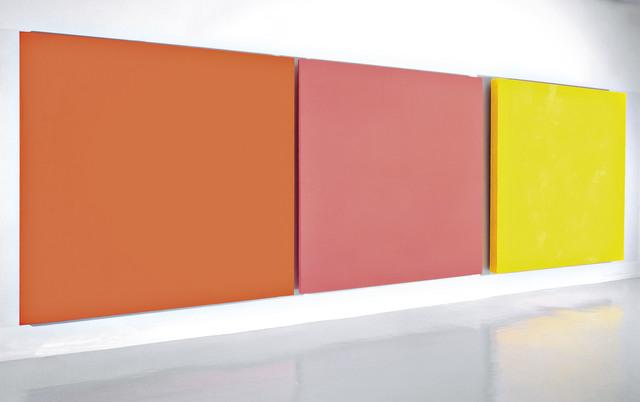 Rosa Brun, 'Enza', 2001, Museo de Arte Contemporáneo de Buenos Aires