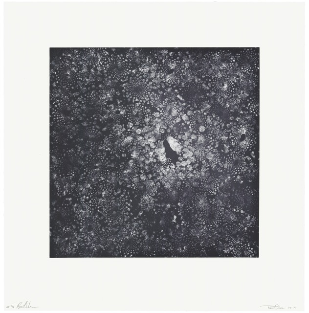 The Oakes Twins, 'Cauli-Cosmos', 2014, Print, Intaglio on Revere Standard White Felt paper, Universal Limited Art Editions