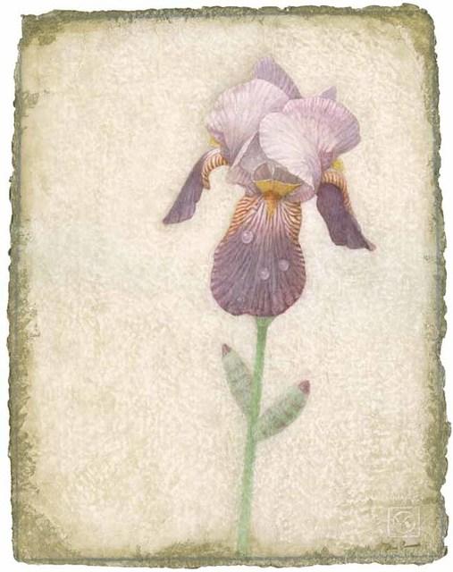 , 'Iris No. 2,' 2015, Didier Aaron