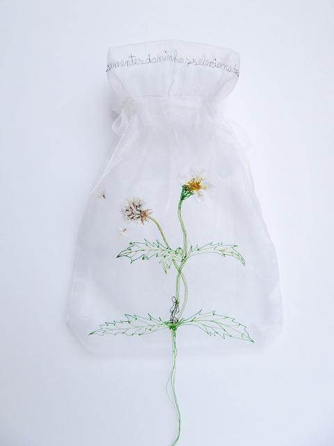 , 'Tridax procumbens homo Da série Coleção de sementes Daninhas,' 2014, Artur Fidalgo Galeria