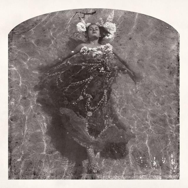 , 'Amarins, Rose, Lace,' 2015, Jackson Fine Art