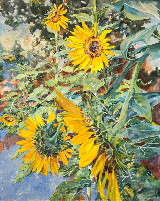, 'Sunflowers,' 2018, Valley House Gallery & Sculpture Garden
