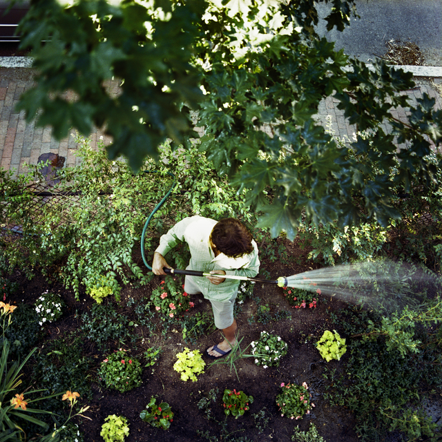 , 'New Garden,' 2007, Panopticon Gallery