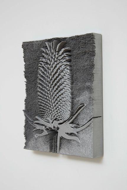 , 'Dipsacus Fullonum,' 2015, Marianne Boesky Gallery