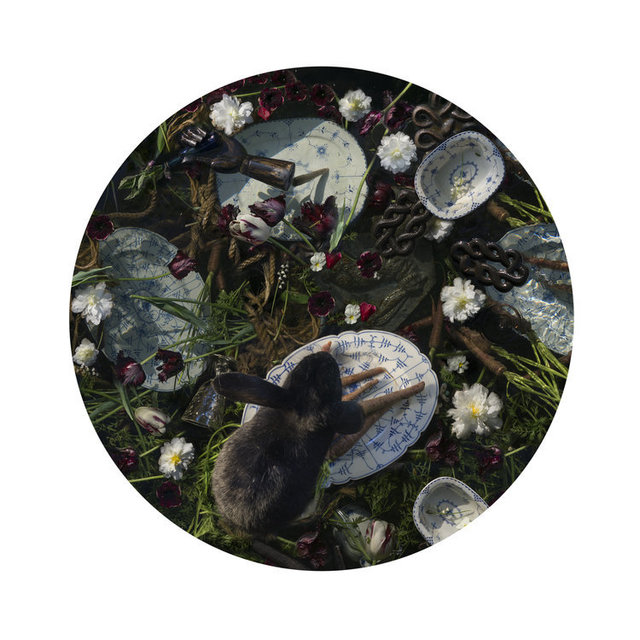 Kahn & Selesnick, 'Black Rabbit', Yancey Richardson Gallery