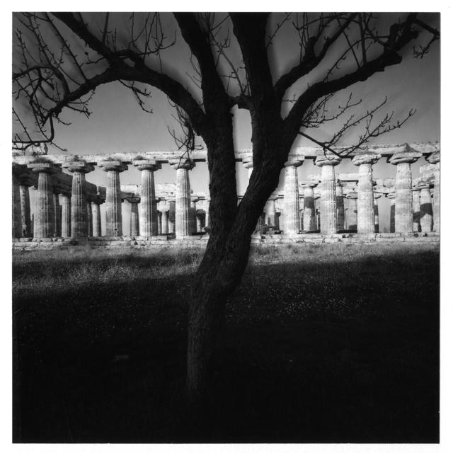 , 'Tempio di Nettuno,' 1986, Vistamare/Vistamarestudio