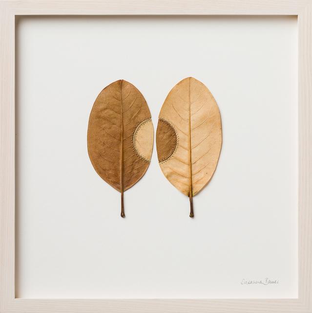 Susanna Bauer, 'Trans-Plant No. 21', 2018, Le Salon Vert