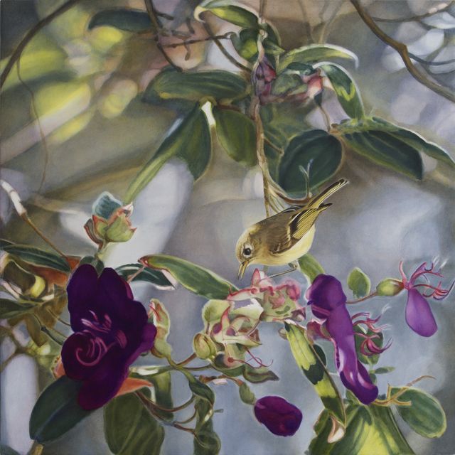 , 'Ruby Crowned Kinglet II,' , Gail Severn Gallery