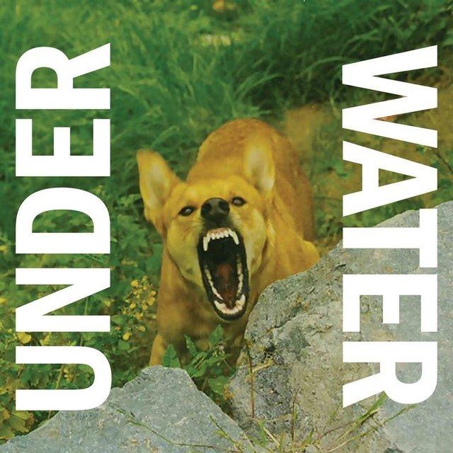 , 'Under Water,' 2014, BILL BRADY GALLERY