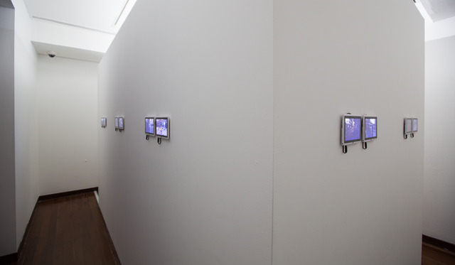 , 'Longing,' 2013, Singapore Art Museum (SAM)