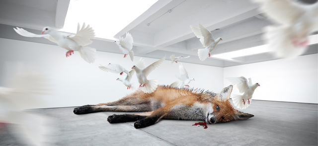 Fabian Bürgy, 'Dead fox', 2014, Alfa Gallery