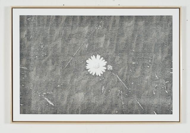, 'Static Image Painting/Grey/Wildflower/Wildwood Road/Hampstead/London/Walking Back From Heathwood/One,' 2015-2016, Wilding Cran Gallery