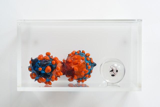 , 'Cells (diptych),' 2014, La Patinoire Royale / Galerie Valerie Bach