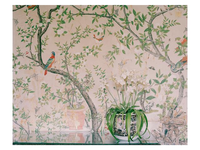 , 'Orchid,' 2013, Francesca Maffeo Gallery