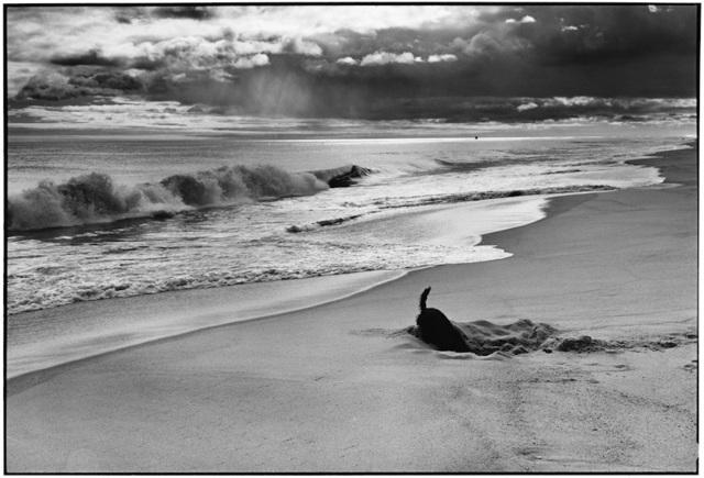 , '14. East Hampton, NY. (Sammy at the beach),' 1998, f22 foto space