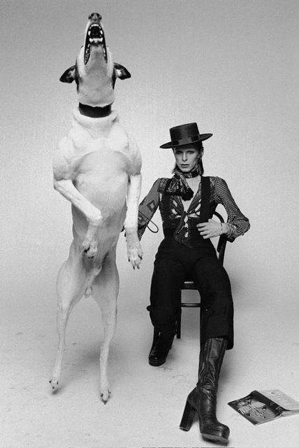 , 'Bowie Diamond Dogs,' 1974, Mouche Gallery