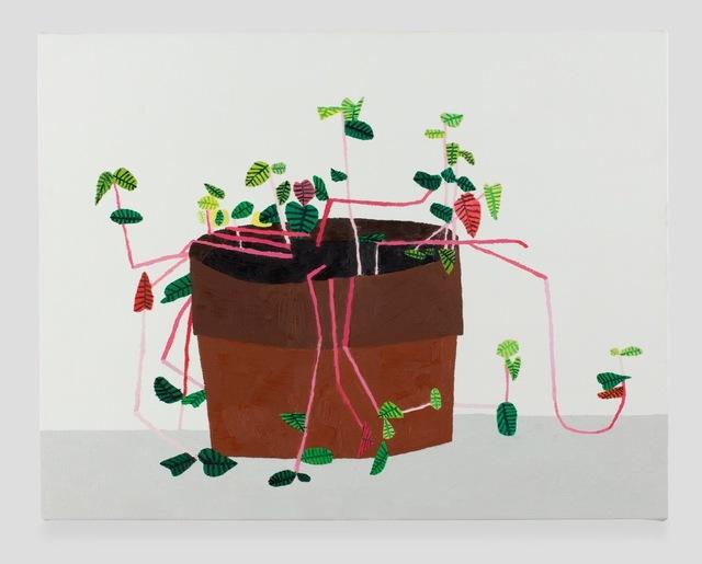 , 'OS Plant 2,' 2011, Patrick De Brock Gallery