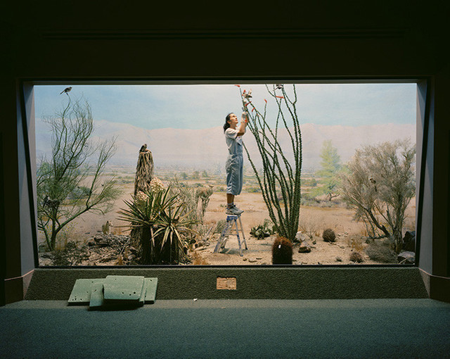 Richard Barnes, Bau-Xi Gallery
