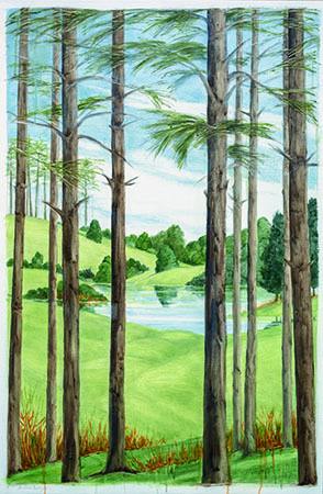 , 'Feliciana Woods, Louisiana,' , Pucker Gallery