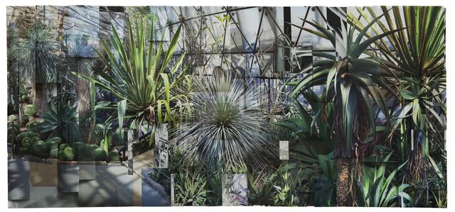 , 'Greenhouse 2,' 2017, Galería RGR