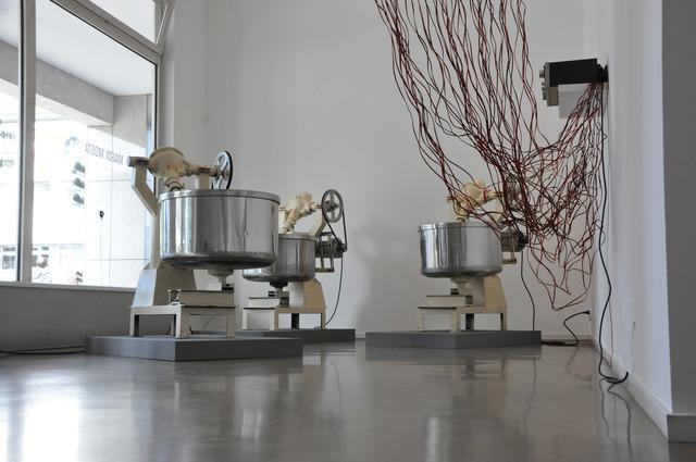 , 'Extract of Paradise,' 2016, Galerie Brigitte Schenk