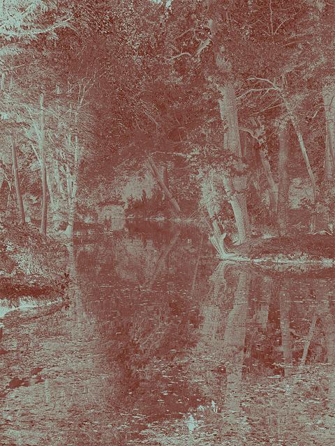, 'Lake's Edge,' 2018, GBS Fine Art