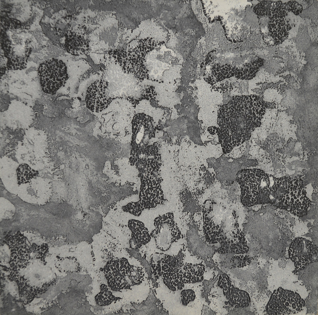 , 'Untitled No. 292,' , The Bonfoey Gallery