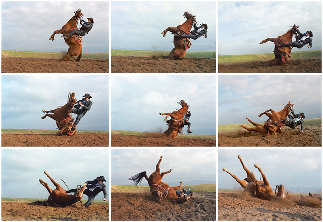 , 'Stunt Cowboy Falling off Horse, Ventura County, California, February 20 (9 Images) ,' , Gail Severn Gallery