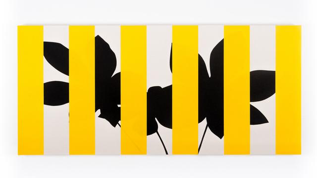 , 'Yarumo (Yellow),' 2016, Instituto de Visión