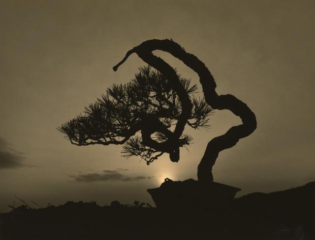 Yamamoto Masao, '#4016', Mizuma Art Gallery