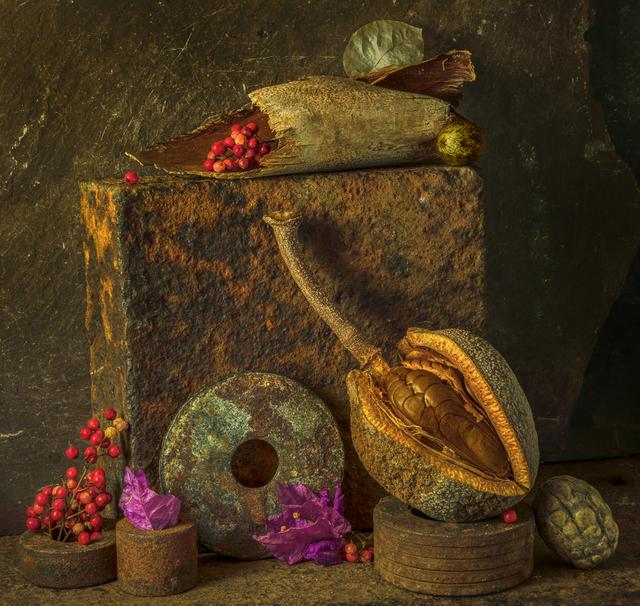 Allan Markman, 'Steel Life with Mahogany Fruit', Soho Photo Gallery
