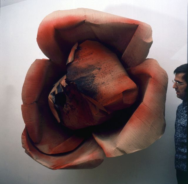 , 'Burnt Rose (Rose bruciata [Oggetti in meno [1965-66]),' 1965, Peggy Guggenheim Collection