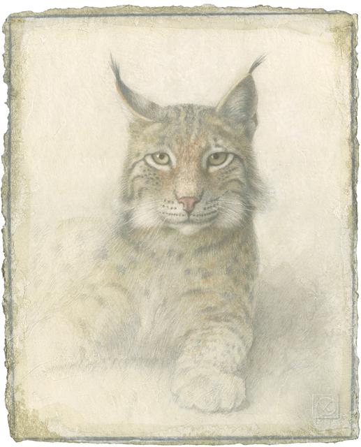 , 'Lynx,' 2014, Didier Aaron