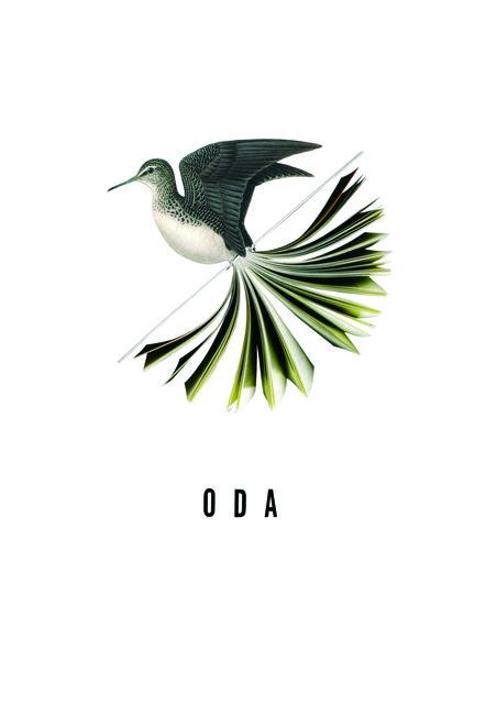 , 'Oda,' 2012, SET ESPAI D'ART