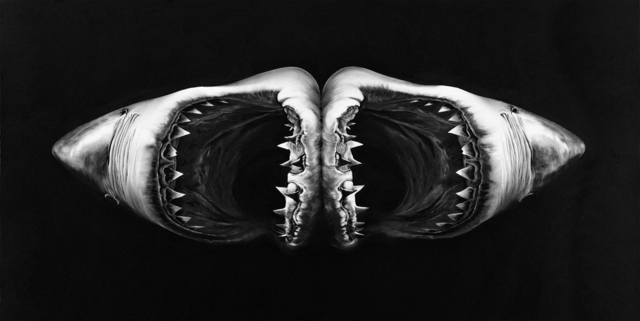 Robert Longo, 'Untitled (Double Shark)', 2010, Print, Archival pigment print, Adamson Gallery