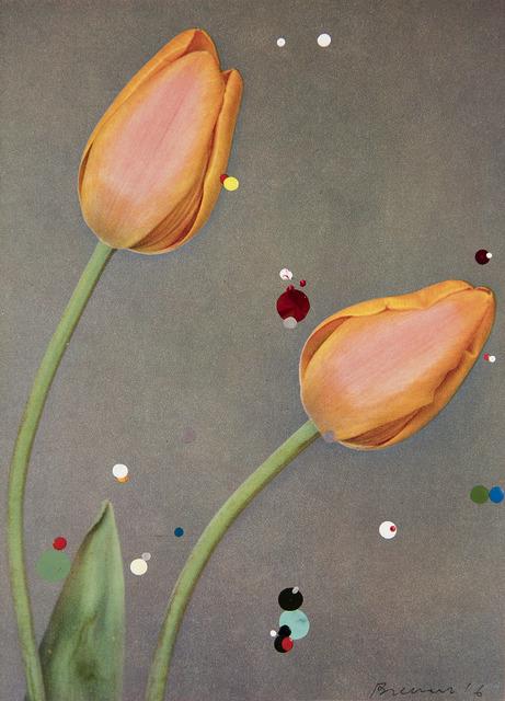 , 'No. 10 #2 Triumph Tulip Bruno Walter, serie Bloemen,' 2016, Galeria Leme