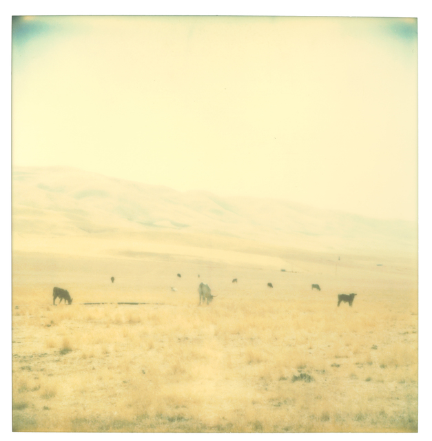 Stefanie Schneider, 'Untitled', 2004, Photography, Analog C-Print, hand-printed by the artist on Fuji Crystal Archive Paper, based on a Polaroid, not mounted, Instantdreams