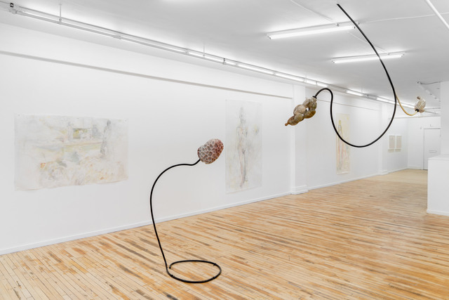 Jennifer Rose Sciarrino, 'From Root to Lip (spore)', 2018, Projet Pangée