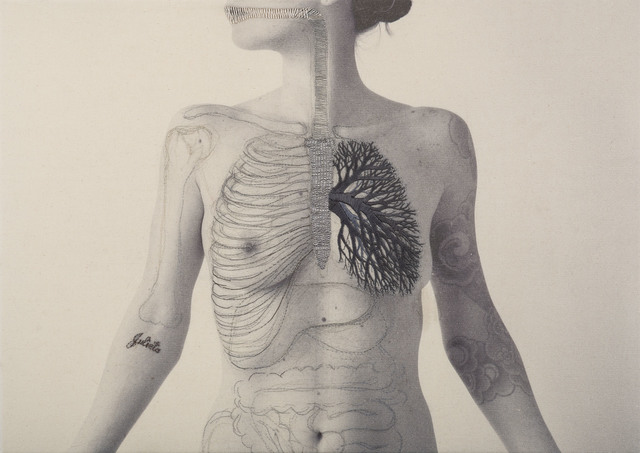 , 'SYSTEM ,' 2016, Isabel Croxatto Galería