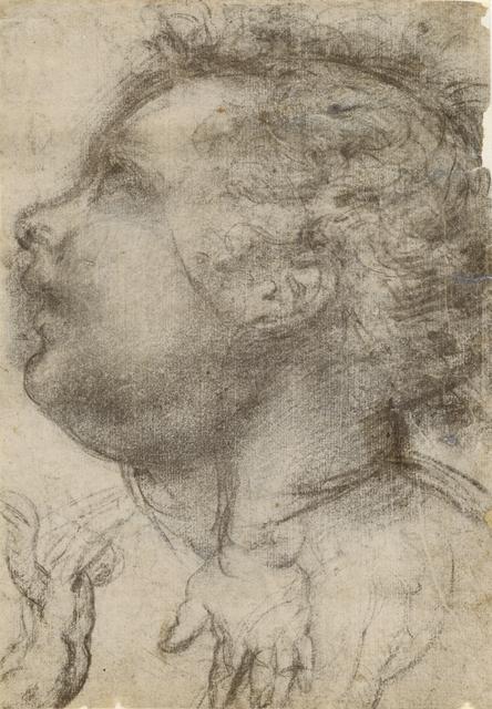 Baccio della Porta, called Fra Bartolommeo, 'Head of a Child, an Angel and a Hand (recto), Male Figure (verso)', 1510-1515, Black and white chalk, J. Paul Getty Museum