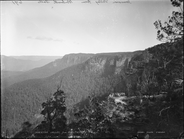 Kerry & Co. Studio, 'Jamieson Valley from Wentworth Falls', ca. 1900, Powerhouse Museum