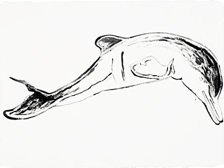 Andy Warhol, 'Plata River Dolphin', 1986, Dean Borghi Fine Art