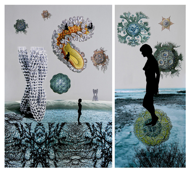 Sonia Mehra Chawla, ' TRANSITORY SHORES & BIOMORPHIC DAYDREAMS II', 2013, Mixed Media, Mixed media on archival canvas, Exhibit 320
