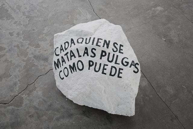 , 'Cada quien se mata las pulgas como puede,' 2017, Parque Galería