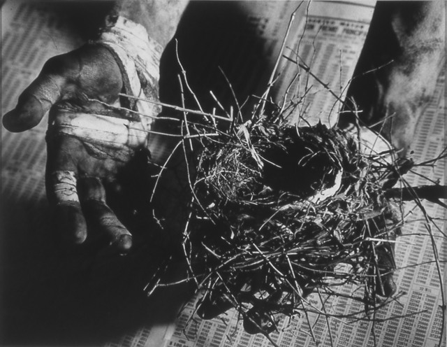 , 'Untitled (hand holding nest),' 1988, P.P.O.W